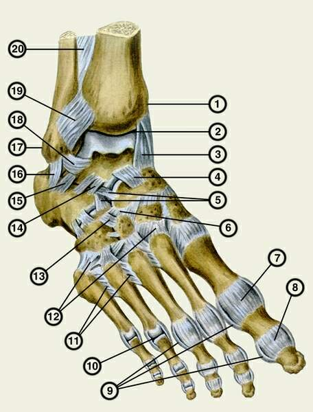 артроз сустава правой стопы
